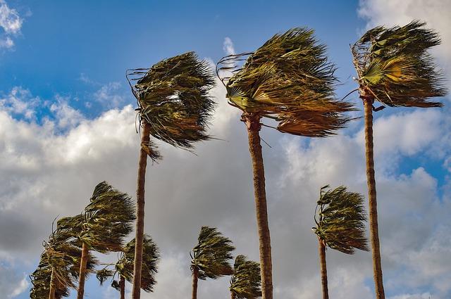 jak wybrać nagranie szumu wiatru