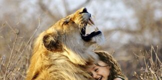 odgłosy afrykańskich zwierząt do snu