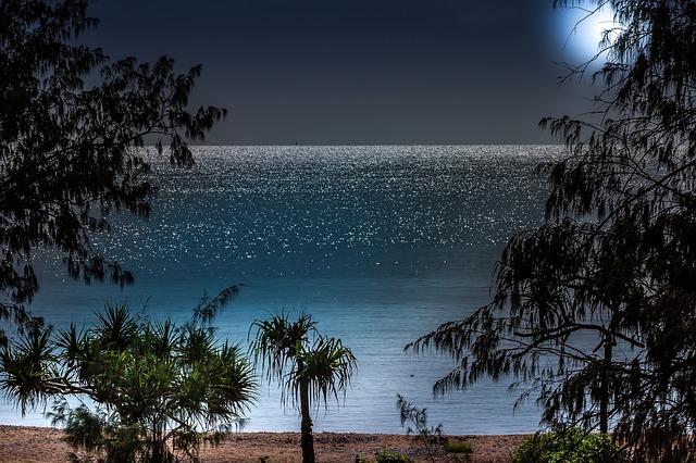 Zalety dźwięków tropikalnej nocy