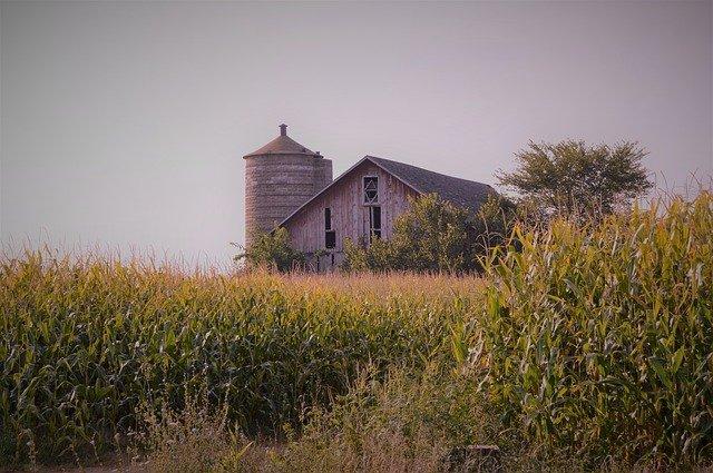 dźwięki do usypiania gospodarstwo rolne