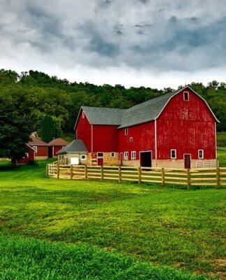 szum farmy do snu dla dzieci